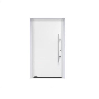 Vhodnaya dver' Thermo 65 motiv THP 010